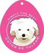 """Coton de Tulear Sticker 4x4"""""""