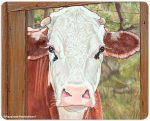 Cow Kitchen Cutting Board Red