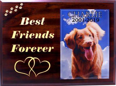Custom Dog Memorial Box Plaque