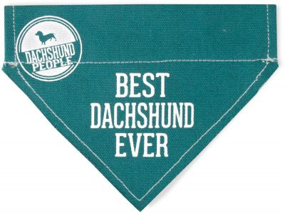 Best Dachshund Ever Bandana