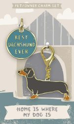 Dachshund Collar Charm and Keychain Set
