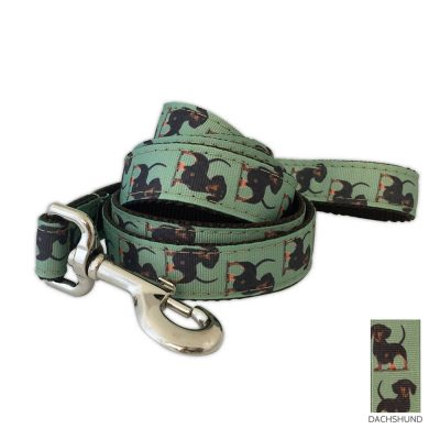 dachshund-leash