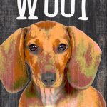 Dachshund Sign – You Had me at WOOF 5×10 1