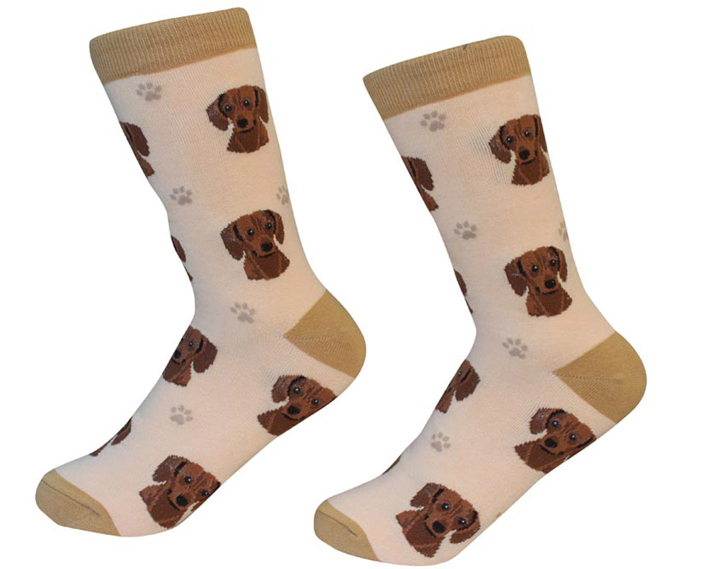Dachshund Face Pattern Socks Red