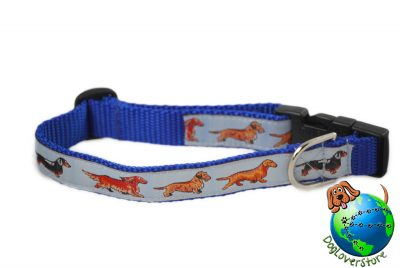 Dachshund Dog Breed Adjustable Nylon Collar Medium 10-16″ Blue 1