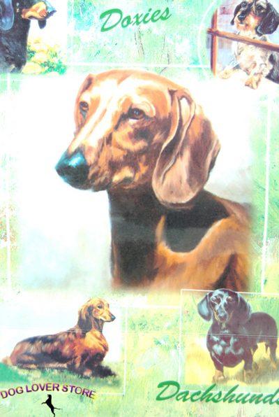 Dachshund Dog Gift Present Wrap