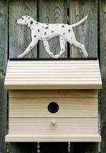 dalmatian-bird-house-liver