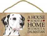 Dalmatian Wood Dog Sign Wall Plaque Photo Display 5 x 10 - House Is Not A Home + Bonus Coaster