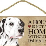Dalmatian Wood Dog Sign Wall Plaque Photo Display 5 x 10 – House Is Not A Home + Bonus Coaster 1