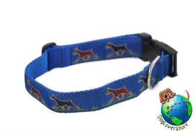 Doberman Pinscher Dog Breed Adjustable Nylon Collar Large 12-20″ Blue 1