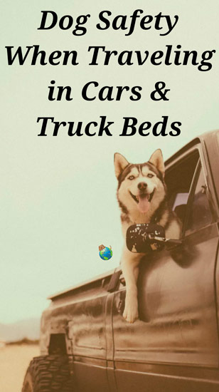 Dog Safety When Traveling in Cars/Trucks