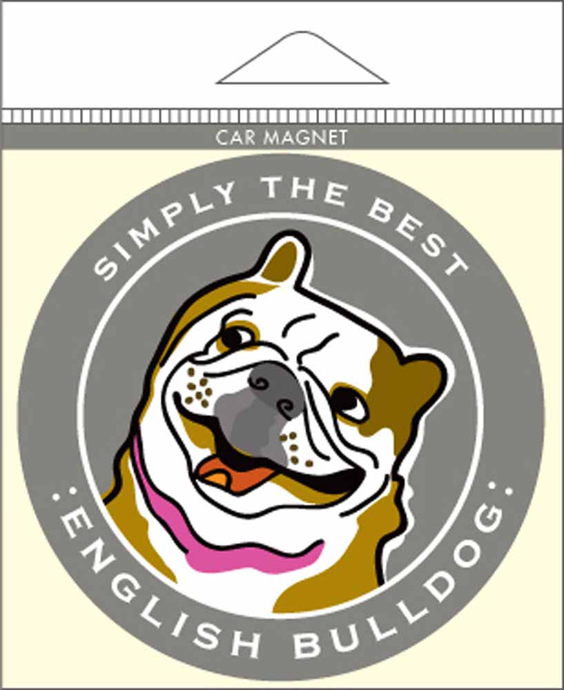 English Bulldog Car Magnet 4x4""