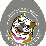 English Bulldog Sticker 4×4″ 1