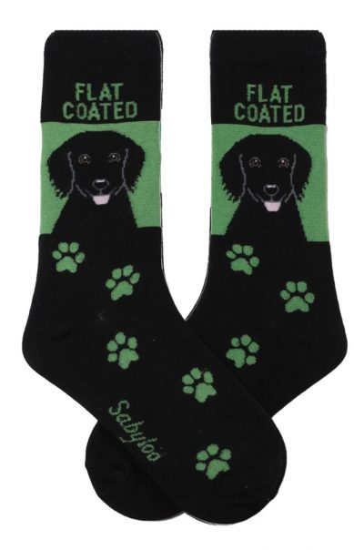 Flat Coated Retriever Socks on Green Background