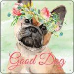 "French Bulldog ""Good Dog"" Metal Sign Fawn"