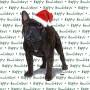 French Bulldog Dog Coasters Christmas Themed Brindle 1