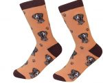 German Short Hair Pointer Face Pattern Socks