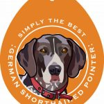 German Shorthaired Pointer Sticker 4×4″ 1
