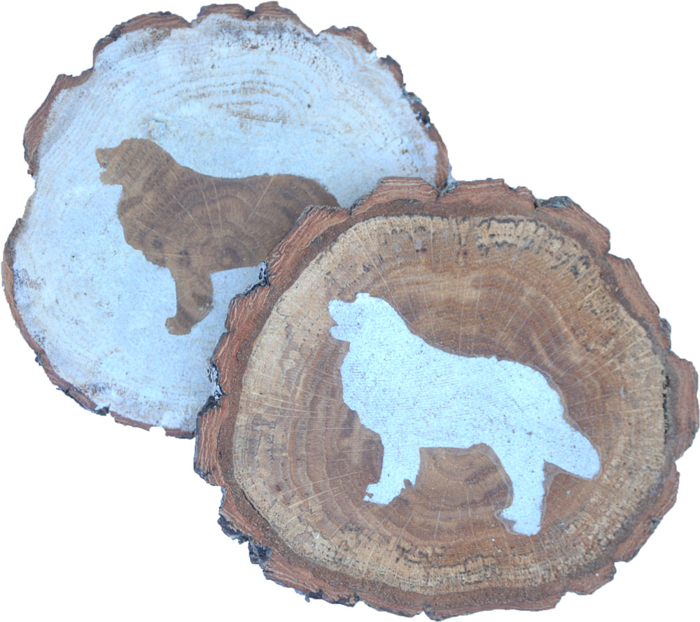 golden-retriever-coasters-wood