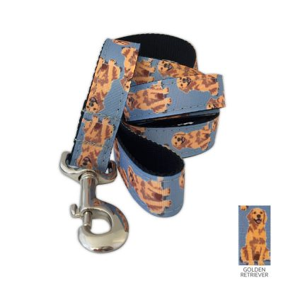 golden-retriever-leash