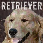 Golden Retriever Sign – I Love My 5×10 1