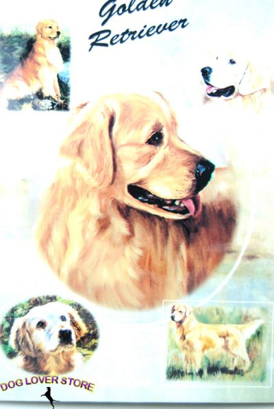 Golden Retriever Dog Gift Present Wrap 1