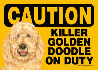 goldendoodle-caution-sign