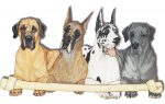 Great Dane Wooden Magnet Family