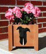 Greyhound Planter Flower Pot Black