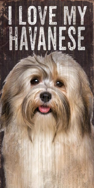 Havanese Sign – I Love My 5×10 1