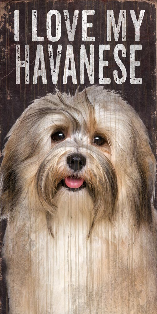 Havanese Sign - I Love My 5x10