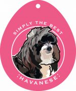 Havanese Sticker 4x4""