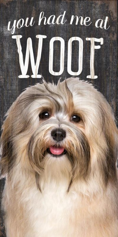 Havanese Sign – You Had me at WOOF 5×10 1