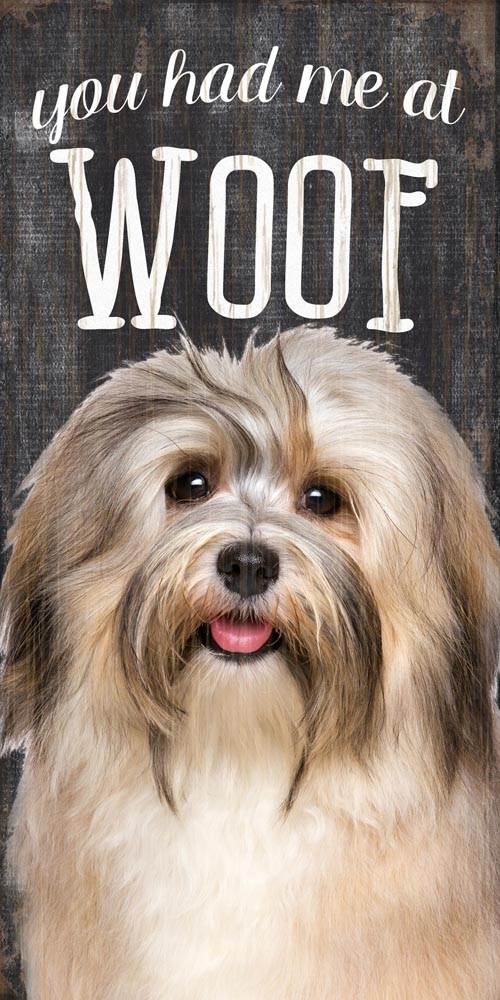 Havanese Sign - You Had me at WOOF 5x10