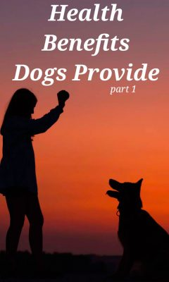 Health Benefits Dogs Provide Part 1