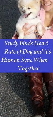 heart_rate_sync
