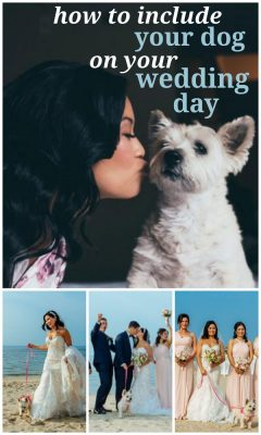 How to Include Your Dog on Your Wedding Day
