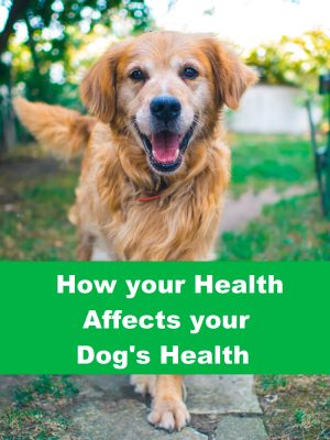 How Your Health Effects Your Dog's Health