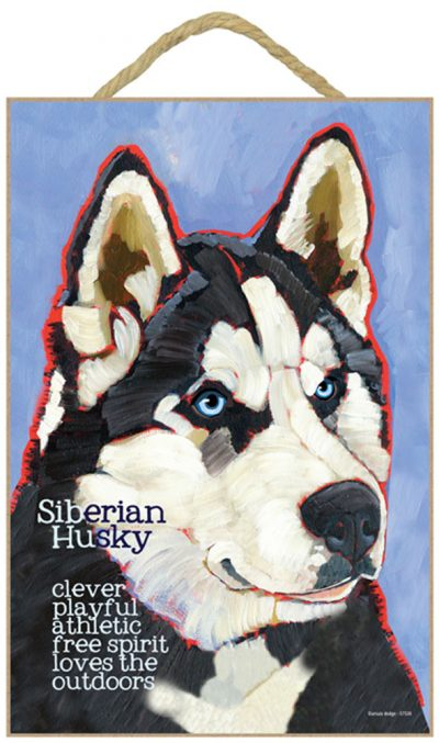 Husky Characteristics Indoor Sign Black & White Blue Eye