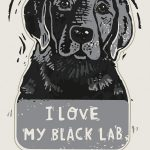 i-love-my-black-lab-sticker-kathy
