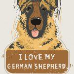 i-love-my-german-shepherd-sticker-kathy