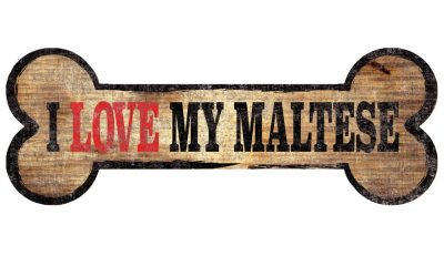 Maltese Sign – I Love My Bone 3×10 1