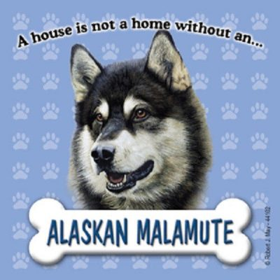 Alaskan-Malamute-Dog-Magnet-Sign-House-Is-Not-A-Home-181488313763
