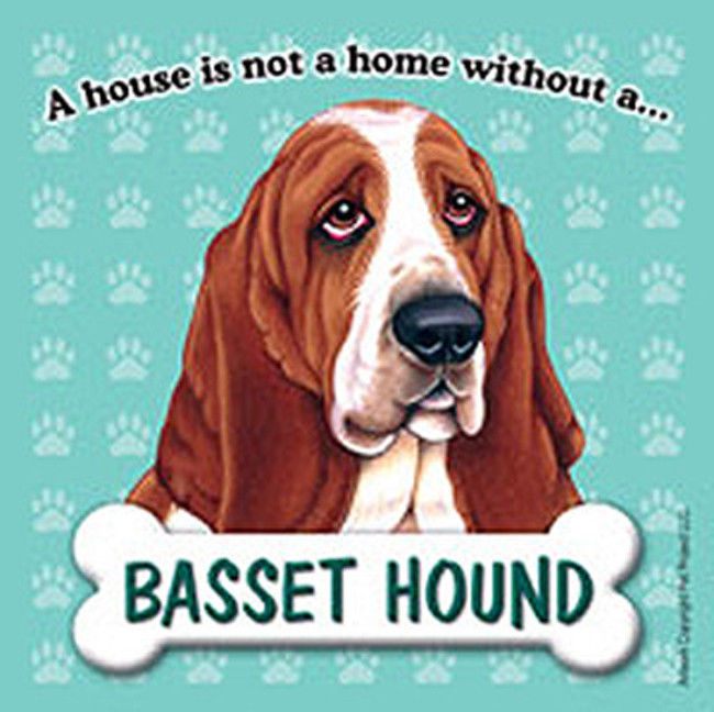 Basset Hound Dog Magnet Sign House Is Not A Home -