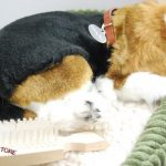 Beagle-Life-Like-Stuffed-Animal-Breathing-Dog-Perfect-Petzzz-181308635485-2