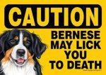 Bernese-Mountain-Dog-Caution-May-Lick-You-To-Death-Dog-Sign-Magnet-Velcro-5x7-181140167501