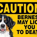 Bernese-Mountain-Dog-Caution-May-Lick-You-To-Death-Dog-Sign-Magnet-Velcro-5×7-181140167501