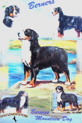 Bernese-Mountain-Dog-Gift-Present-Wrap-400341658767