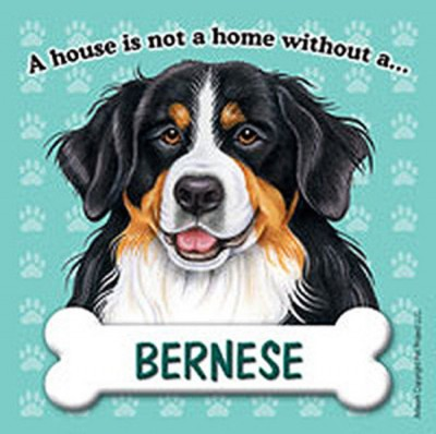 Bernese-Mt-Dog-Magnet-Sign-House-Is-Not-A-Home-180714370068