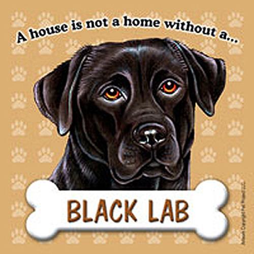 Black Labrador Lab Gifts Merchandise Items Decor